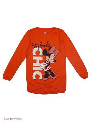 Лонгслив RHS. Цвет: оранжевый