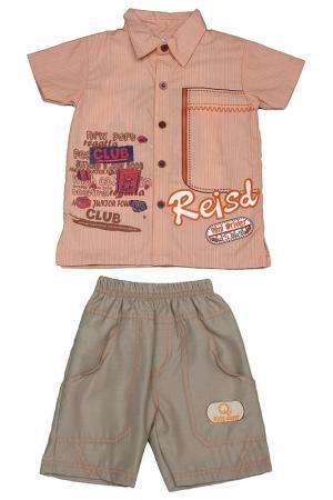 Комплект KIDS CENT. Цвет: коричневый