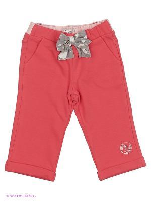 Спортивные брюки Wojcik. Цвет: малиновый