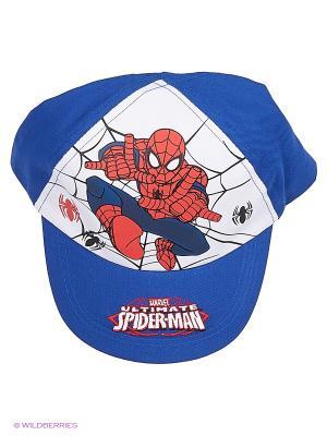 Шапка Spider-Man. Цвет: синий, белый