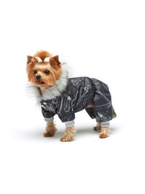 Комбинезон для собак Ай Да Пес. Цвет: темно-серый
