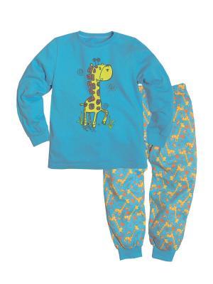 Пижама ДМ Машук. Цвет: голубой