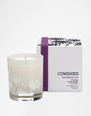 Cowshed Комнатная свеча для релаксации Knackered Cow. Цвет: бесцветный