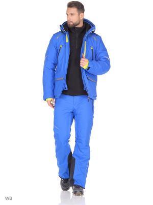 Куртка Stayer. Цвет: синий