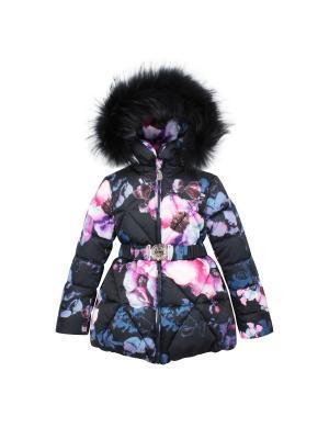 Куртка Pulka. Цвет: черный