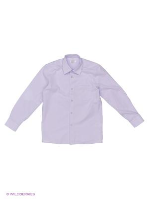 Рубашка Cleverly. Цвет: фиолетовый