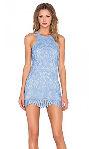 Платье-футляр caspian Lovers + Friends. Цвет: синий