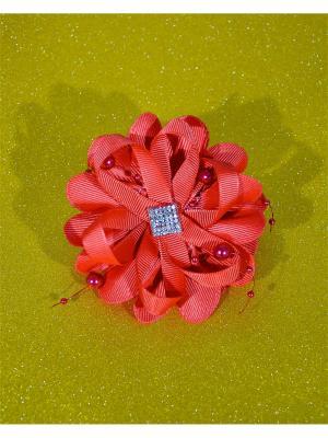 Резинка для волос Bizon. Цвет: коралловый