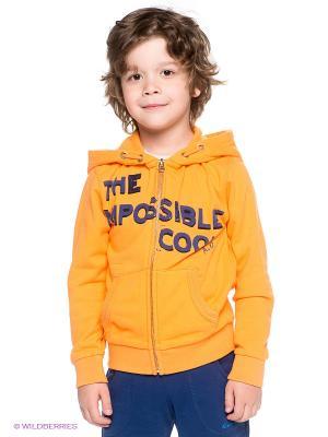 Толстовка American Outfitters. Цвет: оранжевый