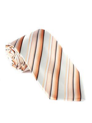 Галстук Franco Frego. Цвет: оранжевый
