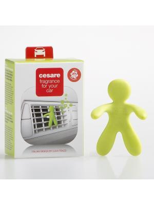 Ароматизатор для автомобиля/CESARE/зеленый/LIME CITRUS Mr&Mrs Fragrance. Цвет: салатовый