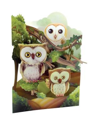 Объемная открытка  Совы Даринчи. Цвет: коричневый