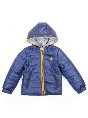 Куртка babyAngel. Цвет: синий