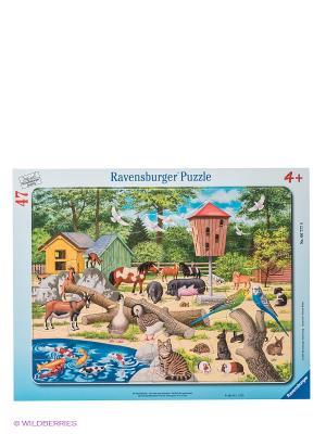 Пазл В детском зоопарке, 47 шт Ravensburger. Цвет: голубой