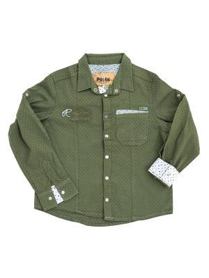 Детская рубашка Pilota. Цвет: зеленый
