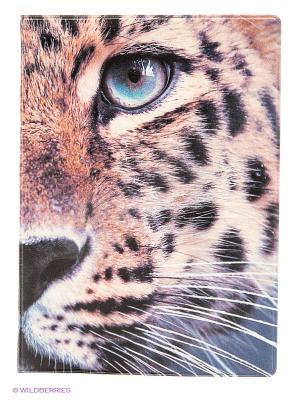 Обложка для паспорта The wild Kawaii Factory. Цвет: коричневый