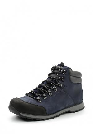 Ботинки трекинговые Terra Impossa. Цвет: синий