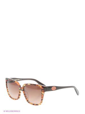 Солнцезащитные очки LM 501 02 La Martina. Цвет: коричневый, черный