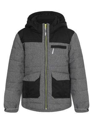 Куртка Icepeak. Цвет: серый