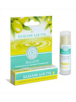 Бальзам для губ Малавит с оливковым маслом, маслом кокоса, ши и миндаля, 6 г. Цвет: зеленый, белый