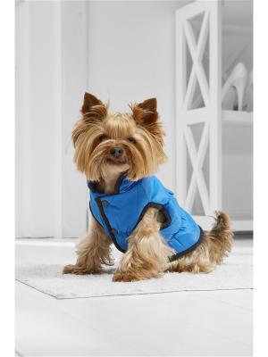 Теплый жилет на кнопках для маленьких пород собак весом 3-8 кг и длиной спинки 30-35 см Nothing but Love. Цвет: синий, оранжевый, черный