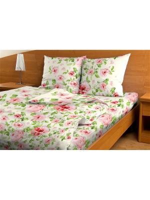 Постельное белье Amore Mio Sharman 1.5 сп. Цвет: белый, зеленый, красный