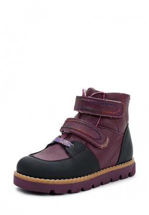 Ботинки Tapiboo. Цвет: фиолетовый