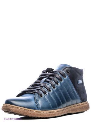 Ботинки Conhpol. Цвет: темно-синий
