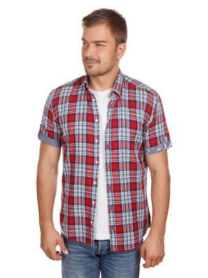 Рубашка McNeal. Цвет: синий, красный