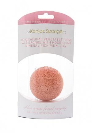 Спонж The Konjac Sponge Co