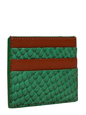Визитница Eleganzza. Цвет: зеленый, коричневый