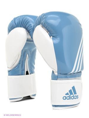 Перчатки боксерские Fitness Adidas. Цвет: голубой