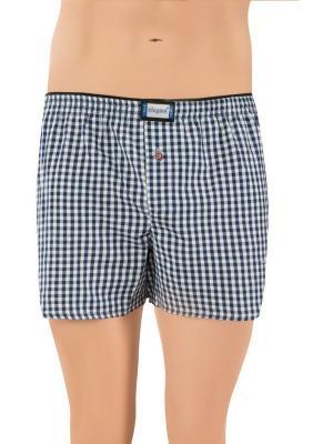 Трусы мужские 3 шт Oztas underwear. Цвет: синий, белый