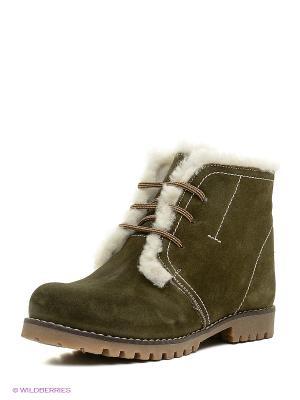 Ботинки Dino Ricci. Цвет: зеленый