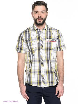 Рубашка Trespass. Цвет: оливковый, белый, темно-синий