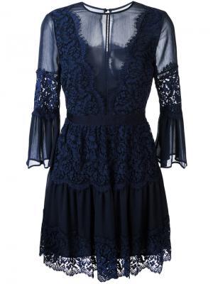 Кружевное платье Perseverance London. Цвет: синий