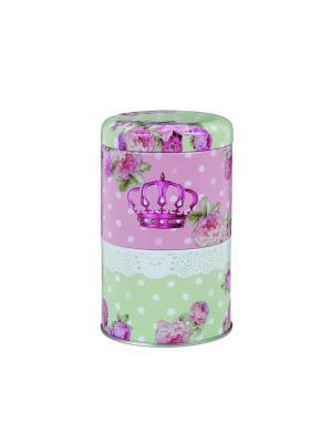 Контейнер для хранения двойной 9,5x15,5 см Чайная королева. Orval. Цвет: белый, зеленый, розовый