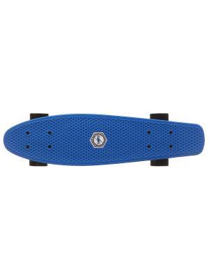 Пенниборд Taste 22 blue. Цвет: синий