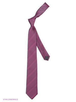 Галстук Cleverly. Цвет: фиолетовый, черный