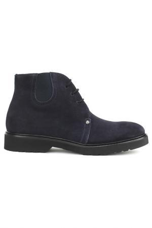 Ботинки Dino Bigioni. Цвет: синий
