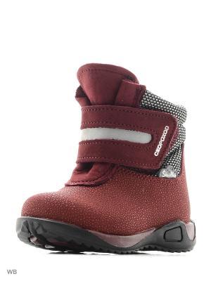 Ботинки Детский скороход. Цвет: бордовый