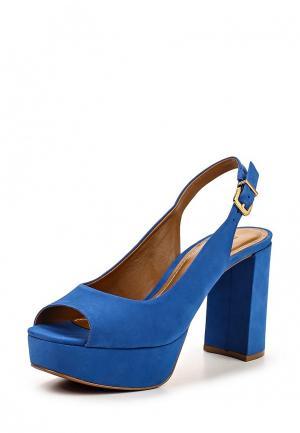 Туфли Carrano. Цвет: синий