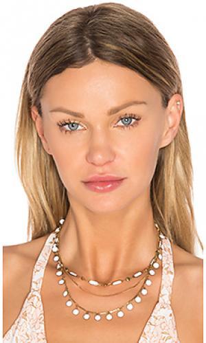 Чокер havana Natalie B Jewelry. Цвет: металлический золотой