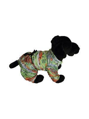 Дождевик Doggy Style. Цвет: салатовый