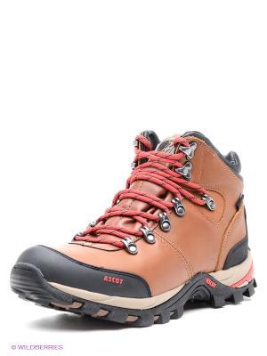 Ботинки Ascot. Цвет: коричневый, черный