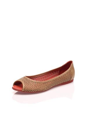 Балетки Bueno shoes. Цвет: коричневый