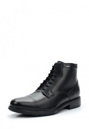 Ботинки классические Geox. Цвет: черный