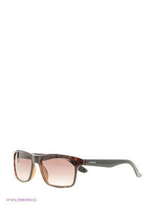 Солнцезащитные очки CARRERA. Цвет: черный, коричневый