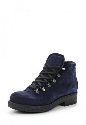 Ботинки Lamania. Цвет: синий