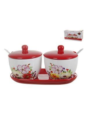 Набор банок для сыпучих продуктов с ложками Polystar Summer, 2 шт., 300 мл. Цвет: красный